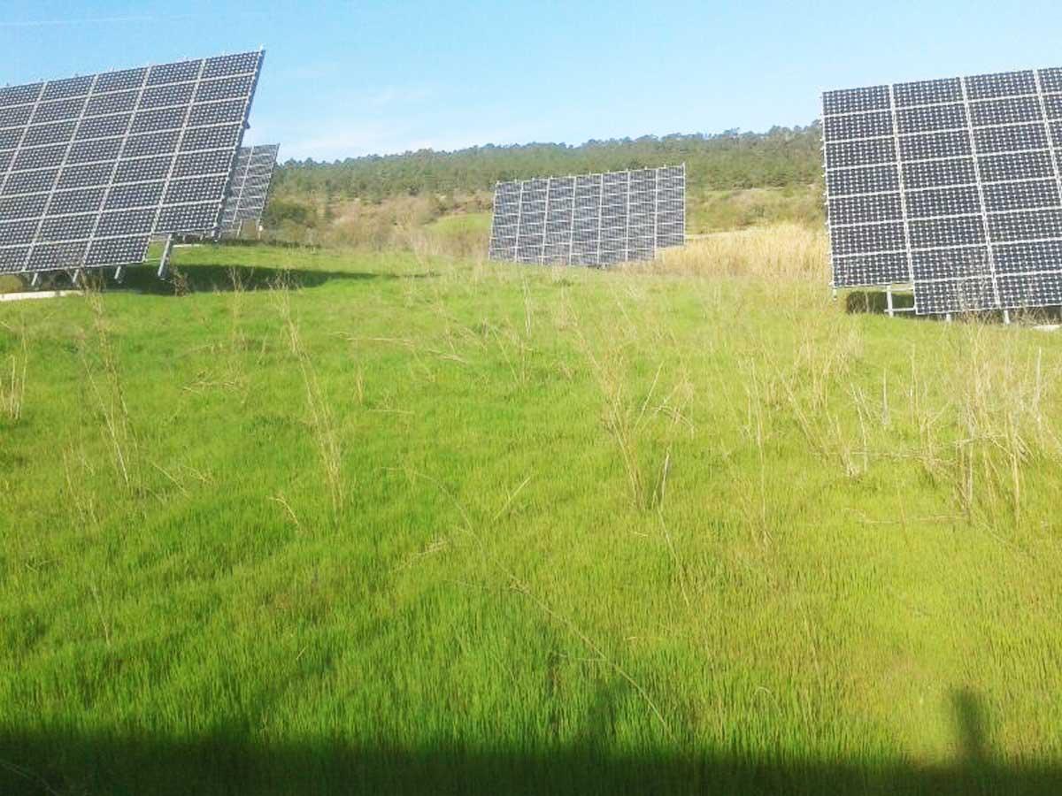 Anoia 109,35 kWp Image