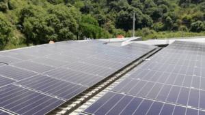 Petroport Barcelona paneles solares
